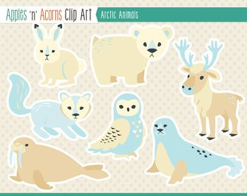 Arctic Animals Clip Art - color and outlines