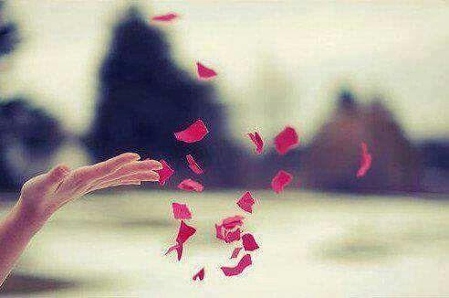 Lasciando andare, si ottiene tutto. Il vero vincitore è chi lascia andare.  Lao Tzu www.ilgiardinodeilibri.it/autori/_lao_tzu.php?pn=545