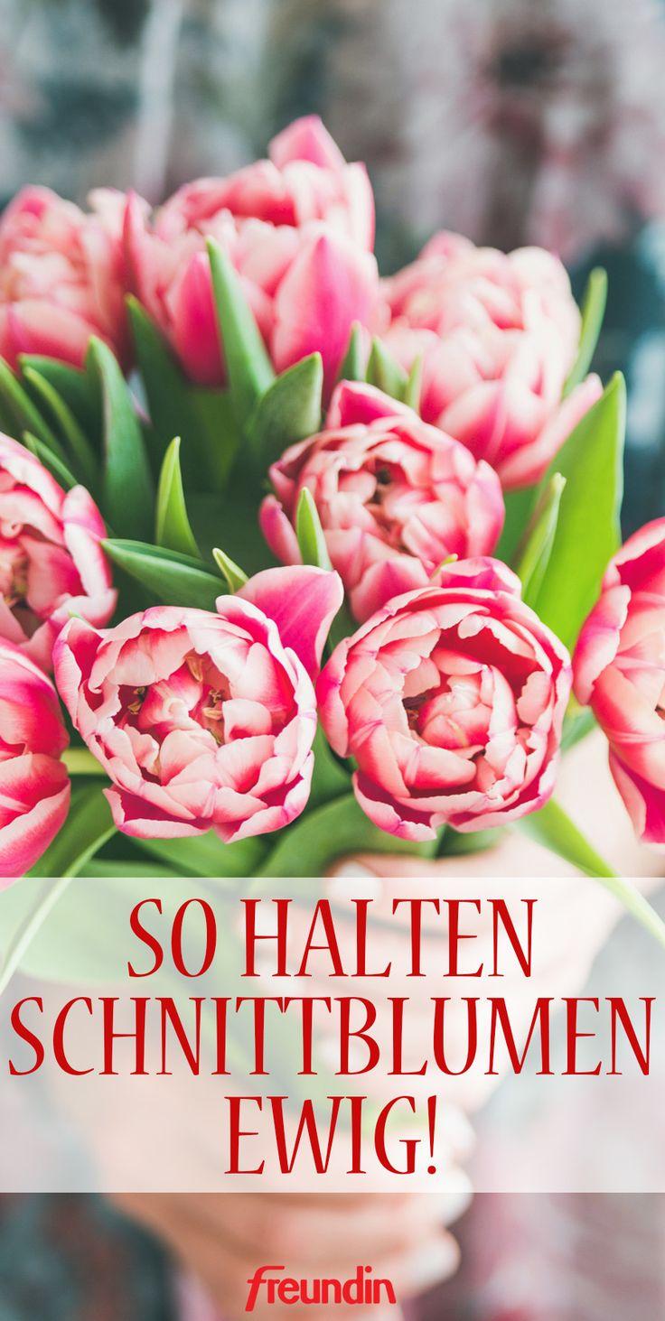 5 Tricks, mit denen Schnittblumen ewig halten