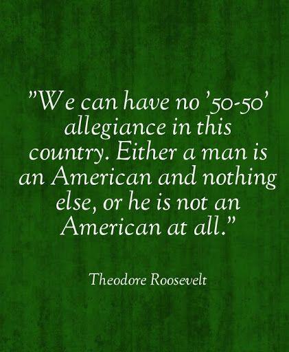 Women Arena Quotes: Best 25+ Theodore Roosevelt Ideas On Pinterest