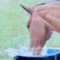 Waterplay ~ Yvonne Todd. Done with colored pencil!
