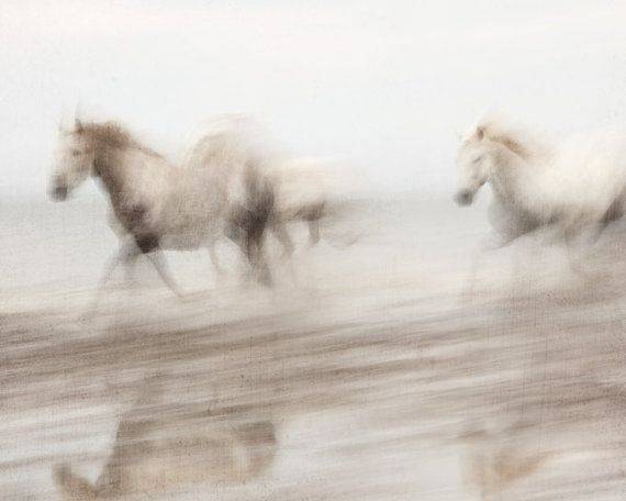 Photographer Irene Suchocki: Abstract photograph of the wild white horses of the Camargue region in France galloping through the water.