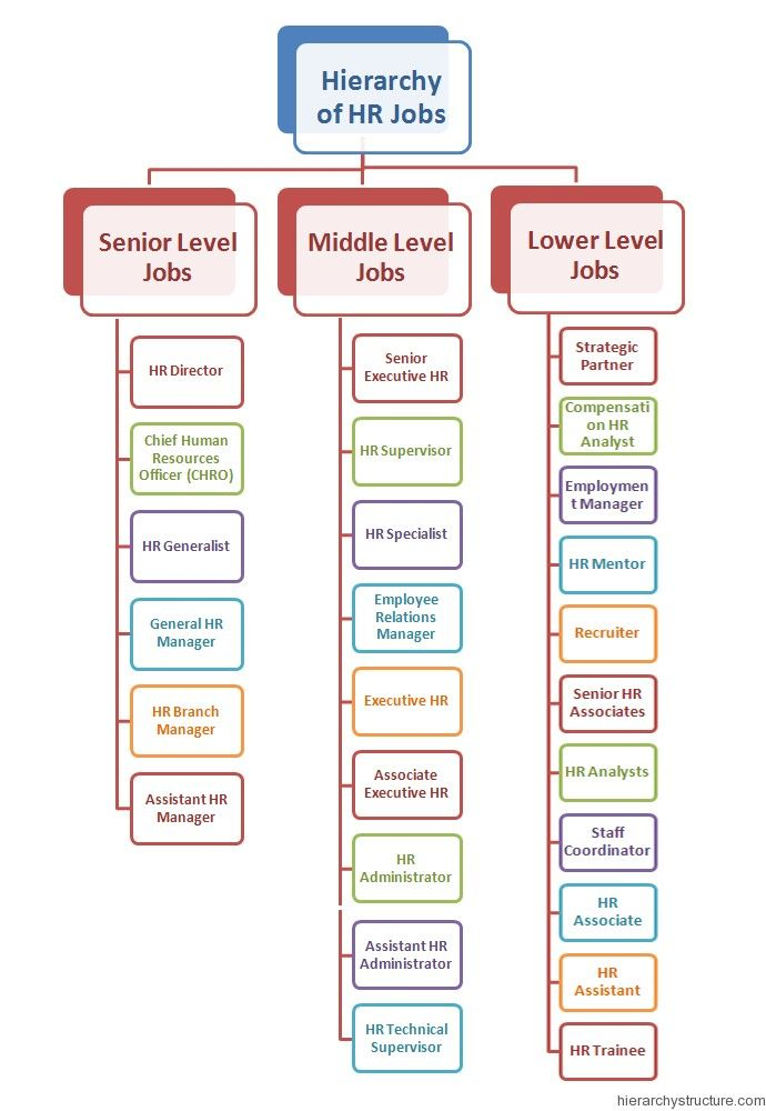 the hierarchy of hr job levels these are the dedicated
