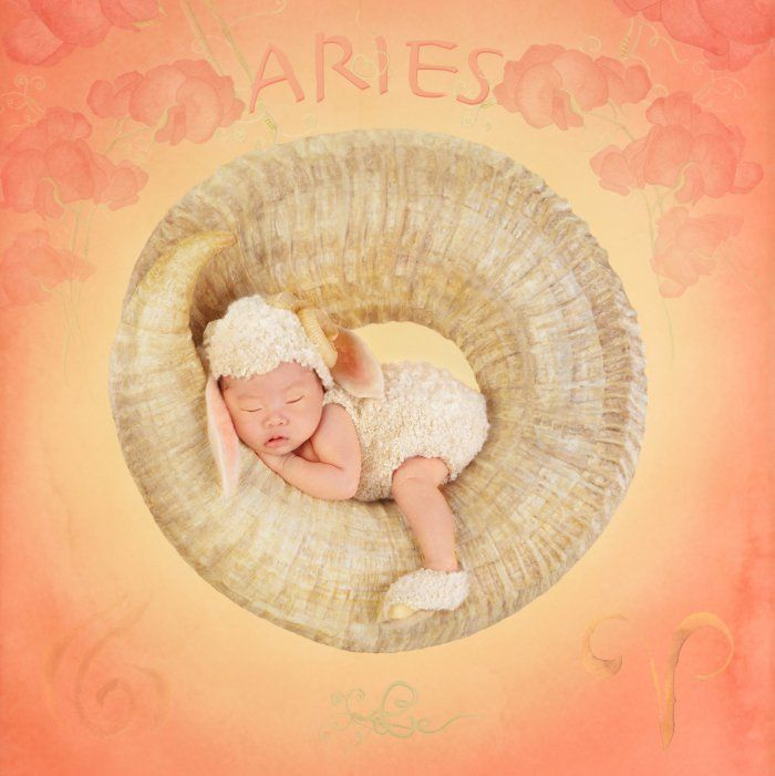 Renowned Photographer Anne Geddes Talks Combining Art and Philanthropy with CARD.com
