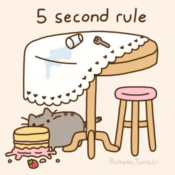 Pusheen Cat 5 second rule GIF