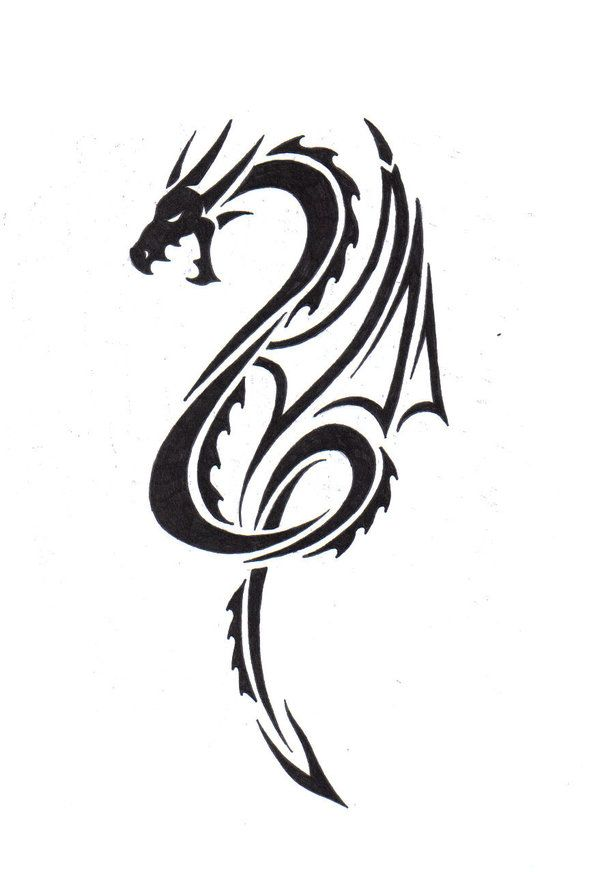 164 best dragon designs images on Pinterest Dragon tattoo