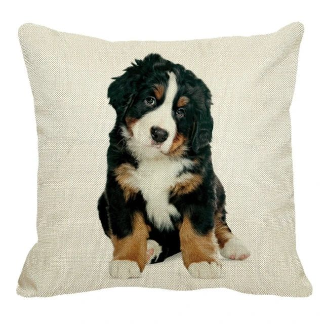 Anubis Bernese Mountain Dog Pillow Cover Anubis Hello Dog Parents Dog Pillow Covers Dog Pillow Pillows
