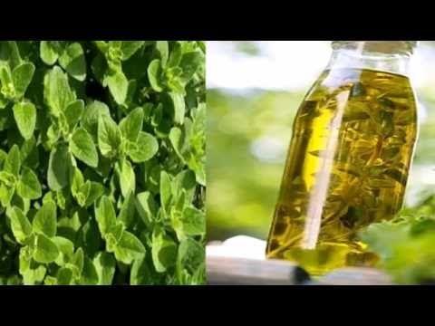 calculos de acido urico dieta acido urico metabolismo tv como disminuir acido urico en sangre