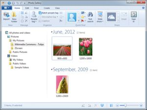 Windows Photo Gallery 2012 screenshot.png