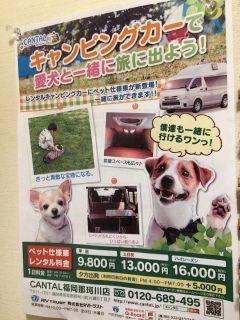 犬も家族の一員 那珂川のキャンピングカーレンタルCANTALさん最高ですお店も車も綺麗#博多馬肉処ふろく本店 #キャンピングカー tags[福岡県]
