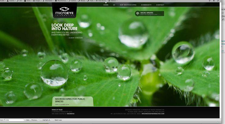 Microeye Interactive website design & development