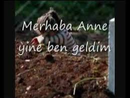 www.ÖLEN ANNEYE ÖZLEM ile ilgili görsel sonucu