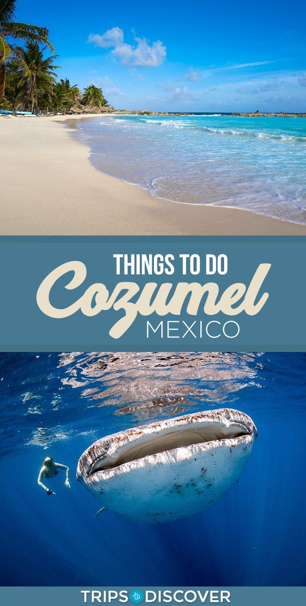Top 9 Things To Do In Cozumel Mexico Mexico Travel Mexico