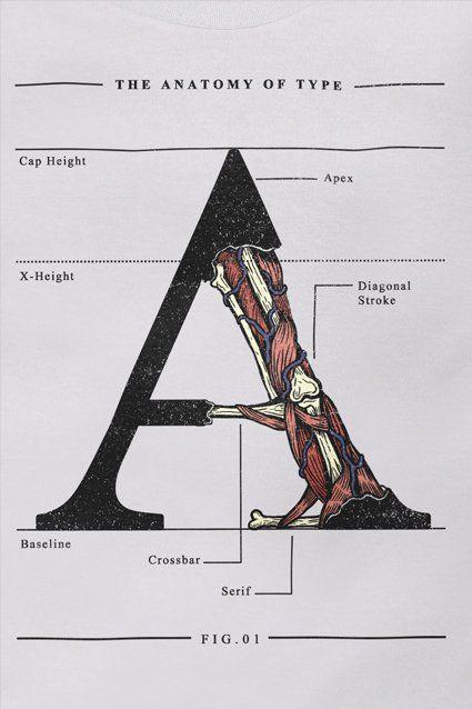 The Anatomy of Type http://chicorei.com/camiseta/the-anatomy-of-type-1424.html
