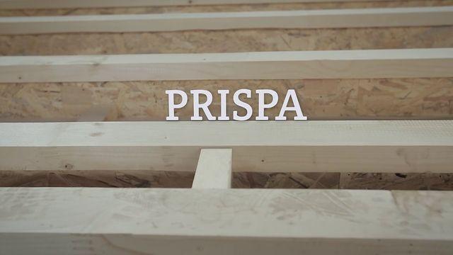 Constructia casei PRISPA - EN subs by alex serban. // ARGUMENT: