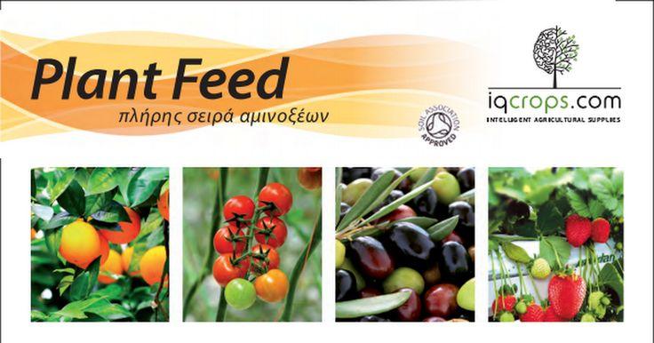 PlantFeed_13-06-17.pdf