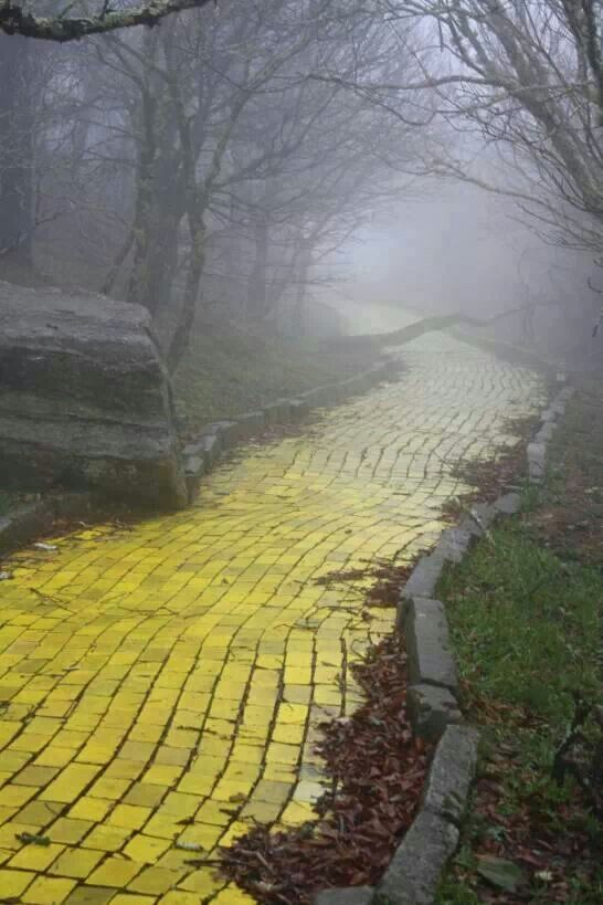 Abandoned Wizard Of Oz theme park. Beech Mtn, NC