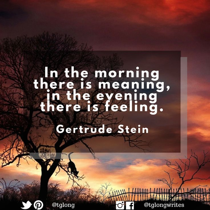 #Quote: In the morning there is meaning, in the evening there is feeling. ~ Gertrude Stein