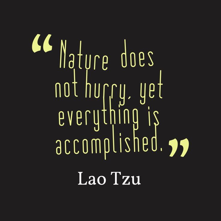 Nature does not hurry, yet everything is accomplished – Quote