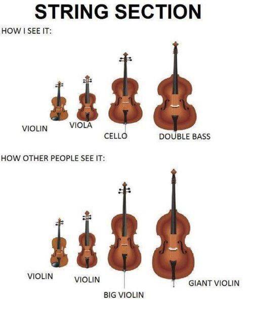 Music humor - String section. Violin, violin, bigger violin