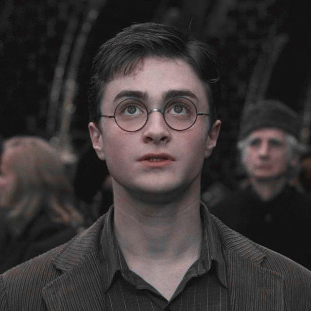 Young James Potter James Potter Vida