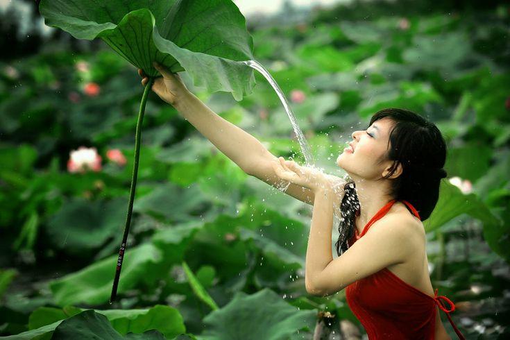 Flowers Native to Vietnam