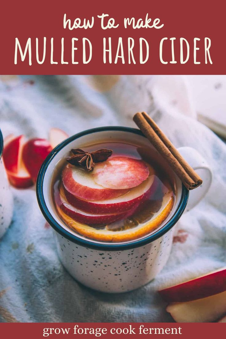 Mulled Hard Cider Warm Spiced Apple Drink For Fall Recipe In 2020 Fun Holiday Food Hard Cider Cider