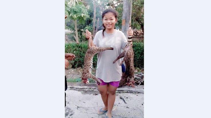 Petition · @PolresGrobogan: Hukum Vita Tri Yuliani, Gadis Penembak Kucing Hutan @KementerianLHK · Change.org