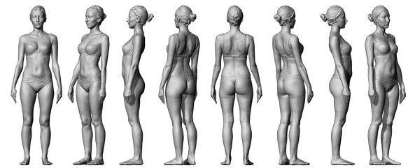 Anatomy 360