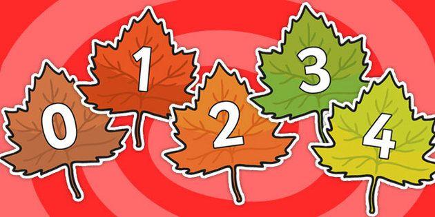Numbers 0-20 on Autumn Leaves