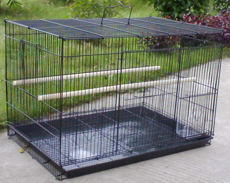 large parrot cages for sale