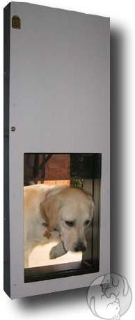 17 Best Images About Wall Mounted Pet Doors On Pinterest