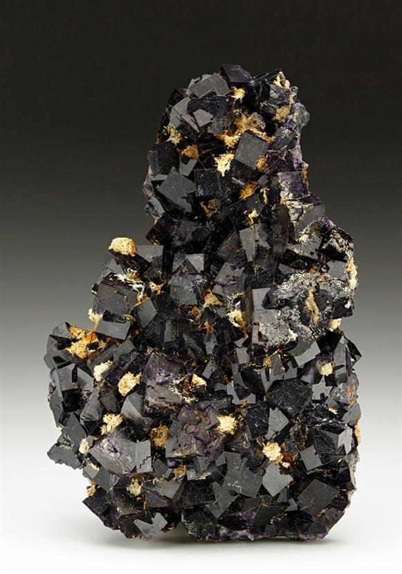 Lustrous very dark purple intergrown cubic crystals of Fluorite from the Opencut above Treak Cliff Mine, Castleton, Derbyshire.