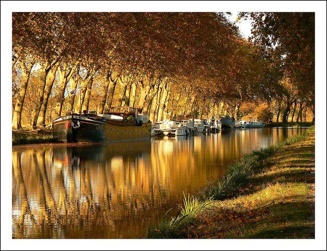 Miroir doré | Canal du Midi