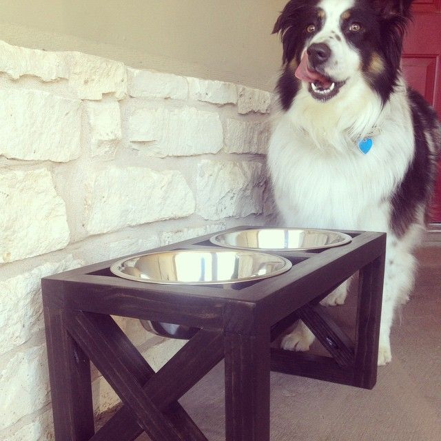 love elevated dog bowls