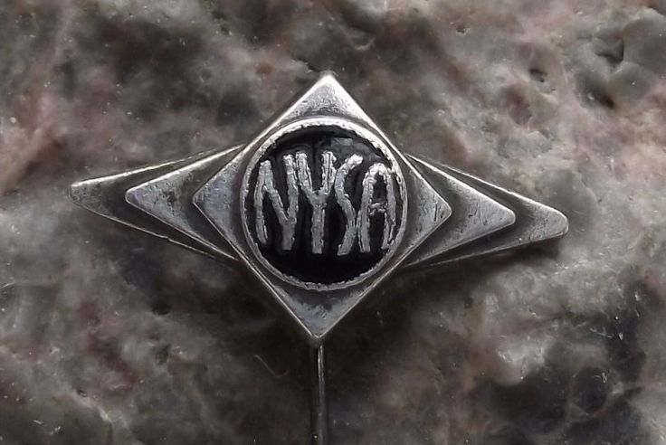 Antique ZDS Nysa Poland Commercial Vehicle Van Maker Polish Ambulance Pin Badge