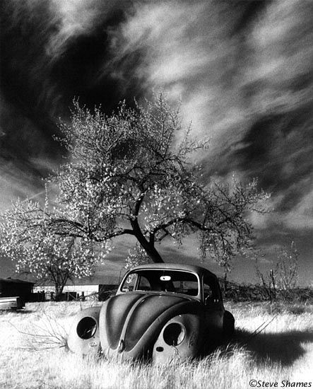 Lost - moody black and white photograph volkswagen vw bug in eerie landscape
