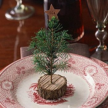 DIY Tiny Christmas Trees - All you need are little disks of stumps, a drill and a few springs of pine. Spray them with a little watered-down white school glue, so the needles stay attached and you have a fun decoration that will last for years.
