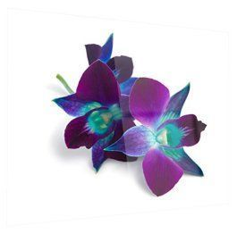 Metal Wall Art is super cool, trendy and stylish especially  for rooms such as offices and kitchens.  In fact, there is a wide variety of metal wall art from crazy abstract  metal wall art to beautiful floral metal wall art. #metalwallart #homewallartdecor #homedecor      Designart MT14232-28-12 Deep Purple Orchid Flowers on White - Flowers Glossy Metal Wall Art - 28x12,Purple/White,28x12