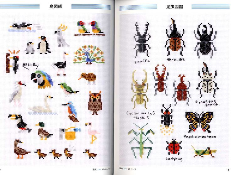 Check out that stickbug! These are all done by Makoto Oozu. I looked at his American book at the bookstore and it just didn't have all these cute animals in it! It had some, but these books look AWESOME. And expensive because they are Japanese :(