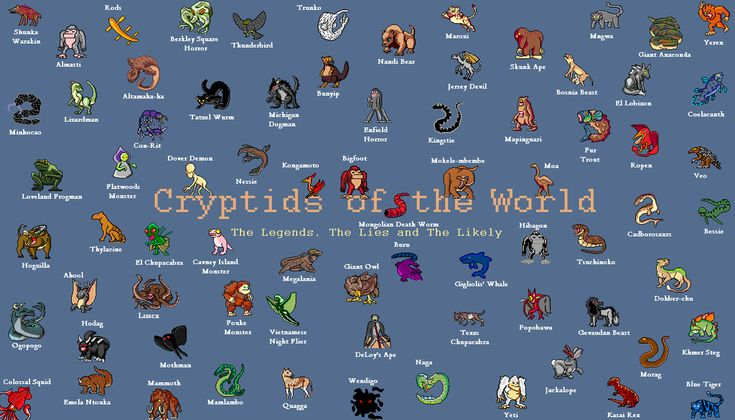 Chronicles Of The Crypto Knights