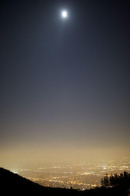Los Angeles Night in Laurel Canyon