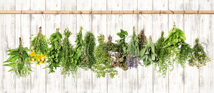 How a Naturopath can help