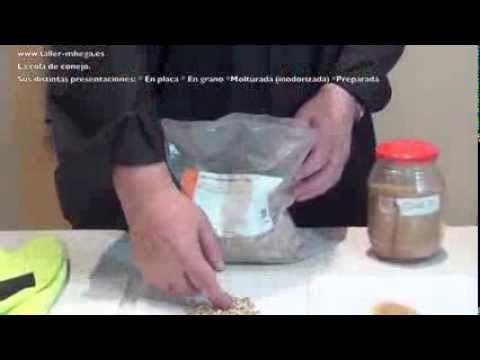 ▶ ICONOS BIZANTINOS II: LA IMPRIMACIÓN - YouTube