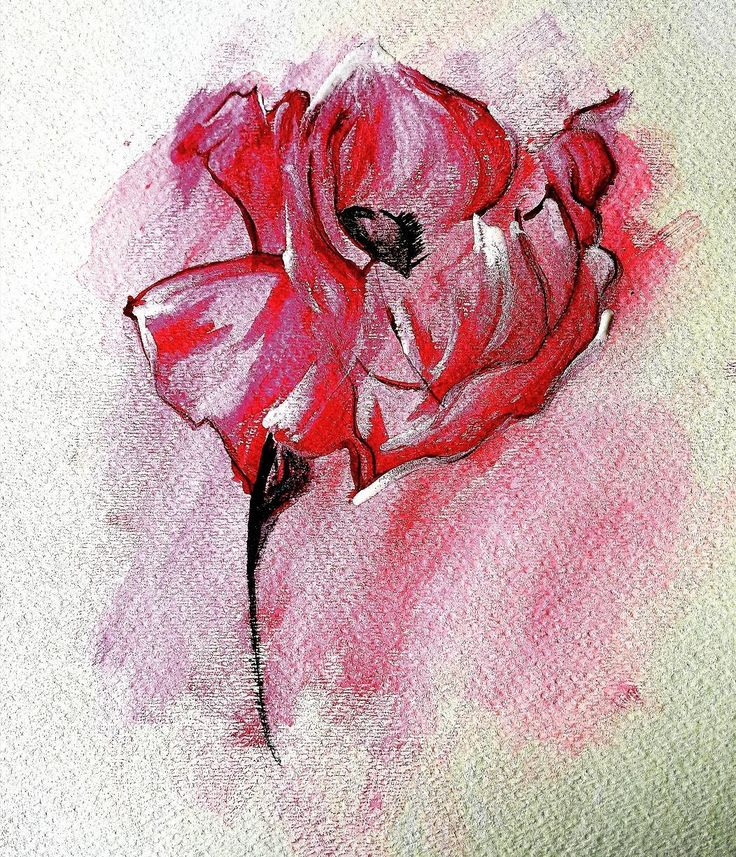 #watercolour #painting by rmartin