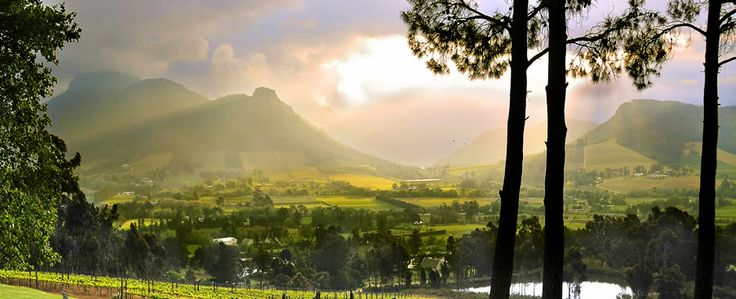 La Petite Ferme - Accommodation, Restaurant and Winery in Franschhoek