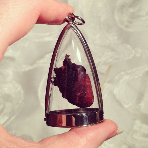 Real Dry Preserved Rabbit Heart Pendant Necklace by BoneLust on Etsy