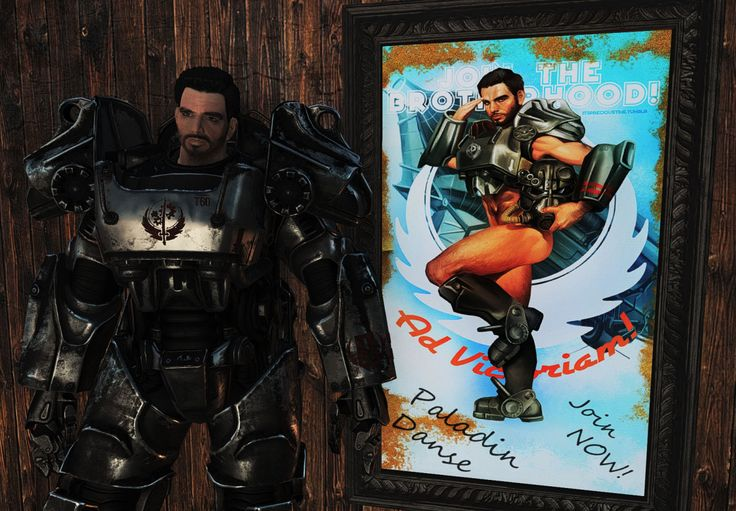 paladin danse fallout 4 likes and dislikes in a relationship