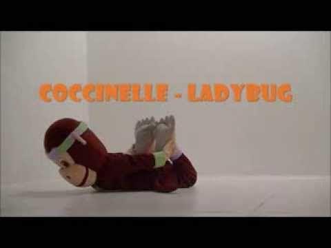 Coccinelle PedaYOGA posture