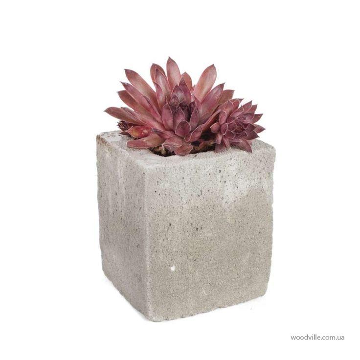 Выносливый Суккулент в бетонном кашпо Детройт будет долгое время украшать ваш подоконник или террасу, а также является отличным подарком. Авторские аксессуары для сада, цветочные композиции и деревянная мебель в магазине Вудвиль.